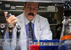 Paul B. Fisher, M.Ph., Ph.D.