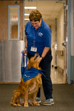 Therapy dog with handler