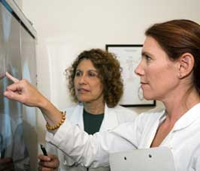Two doctors looking at a mammogram